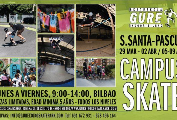 CAMPUS DE SKATE PARA S.SANTA Y PASCUA